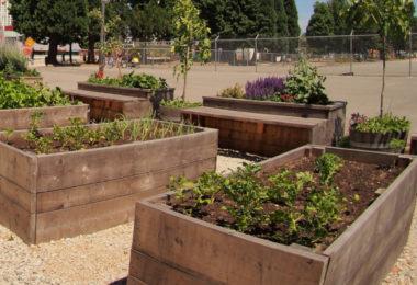 Jardiniere bois de palette