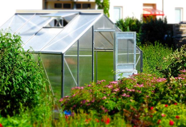 Serre de jardin