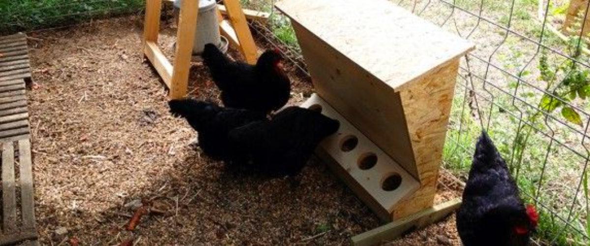 Mangeoire poule en bois